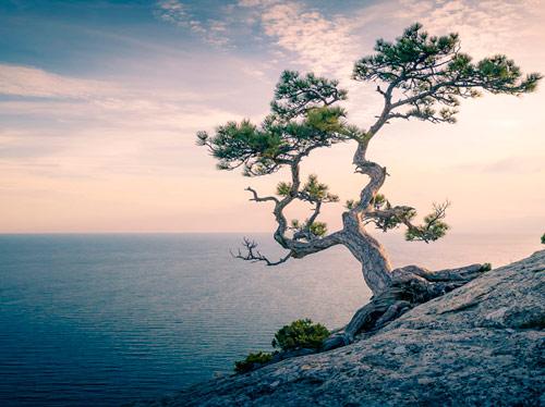 Un'esperienza di mindfulness: la consapevolezza dei sensi